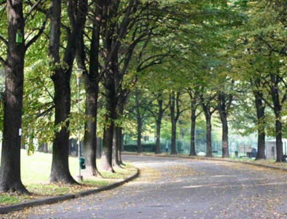 Parco della Pellerina Torino