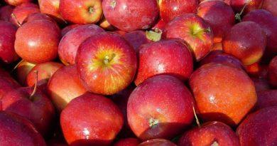 ortofrutta mela rossa cuneo