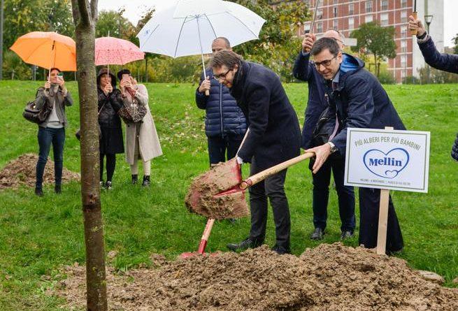 nuovi alberi per le famiglie di Torino