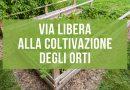 coltivazione degli orti a Torino