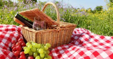fare picnic